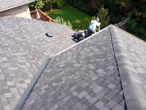 shingle roof 28