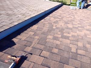 shingle roof 31