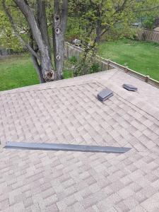 shingle roof 43