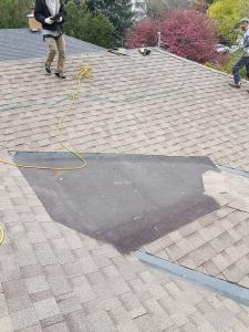 shingle roof 44