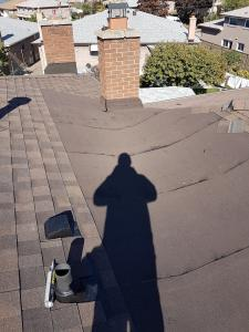 shingle roof 48