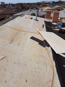shingle roof 50