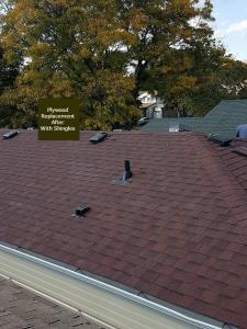 shingle roof 55